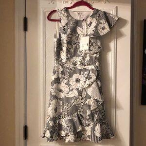 Ruffle Nordstrom Dress